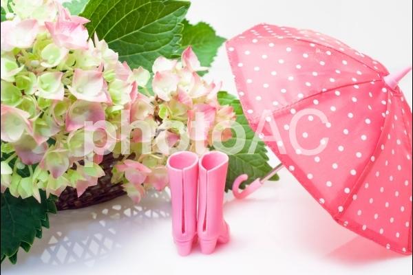 紫陽花と長靴と傘の写真