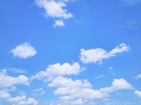 夏空.41の写真