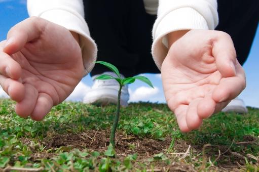 新芽 新しい命 生命 生命保険 女の子 春 育てる 植物 培養 成長 青い空 環境保護