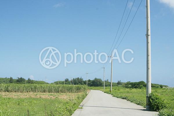沖縄 田舎道の写真