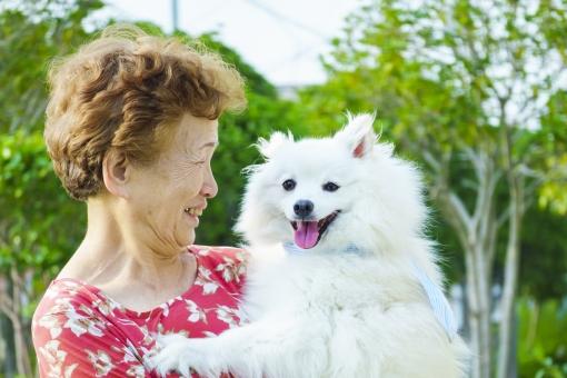 高齢女性と犬の写真