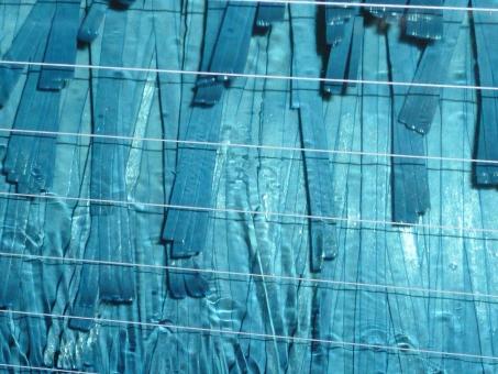 洗車 車 洗い モップ 自動 水 車内 青 水色 テクスチャ 熱線