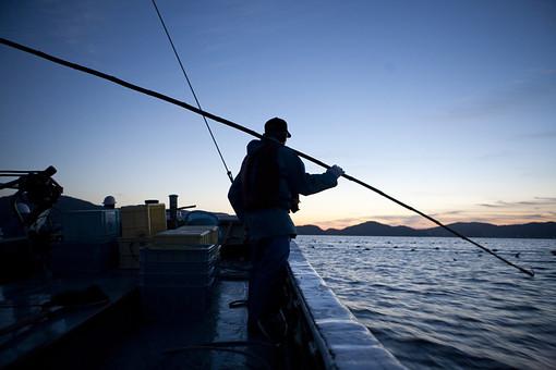 屋外 野外 漁 海上 漁獲 漁り 魚 獲る 漁業 海 水揚げ 大量 大漁 釣り 漁獲 人 人物 漁師 早朝 船 船上 漁船 釣り竿 竿 網