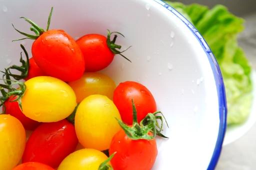 ミニトマト カラフルトマト カラートマト 野菜 新鮮 トマト 水洗い レタス おいしい みずみずしい キッチン 食べ物 サラダ 明るい 美味しい 美味 鮮やか 黄色 赤 緑 台所 料理