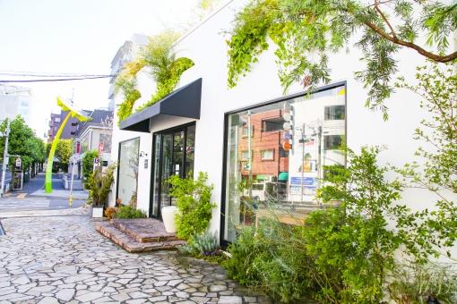 代官山 街 町 おしゃれ ショップ レストラン カフェ 通り ストリート ショッピング 大人 都会 東京 渋谷区 ビル 建物 歩道 街路樹 木 ウィンドウ ウィンドウショッピング 散歩 街角 風景 景色 都心 道路