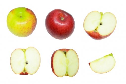 林檎切り抜きセット2の写真