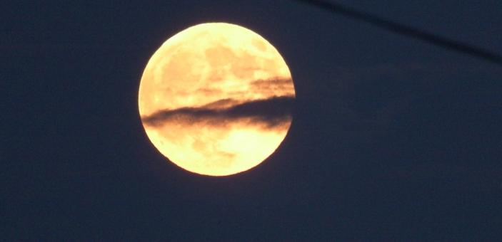 大きな満月」に関する写真|写真...