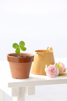 クローバー 四つ葉 四葉 シロツメクサ 幸運 幸せ 幸福 喜び 祝福 お祝い 祝い 草 緑 エコ エコロジー 鉢植え かわいい 植物 グリーン ラッキー 環境 環境問題 白バック 新芽 ジョウロ 如雨露 じょうろ 花
