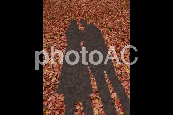 男女の影 2の写真