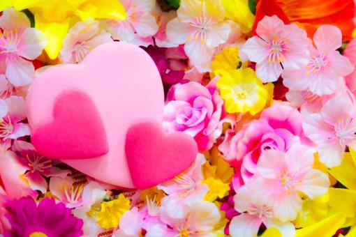 花 ハート ピンク 花びら 植物 かわいい 恋愛 青春 恋 愛 明るい きれい 小物 バレンタイン 結婚式 結婚 温かい 女性 カード メッセージ ボード イベント さくら 桜 春 バラ 父の日 母の日