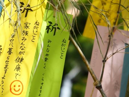 七夕 七夕祭り 七夕飾り 装飾 飾り 7月 夏 季節 風物 イベント 日本 文化 風景 お祭り 願い