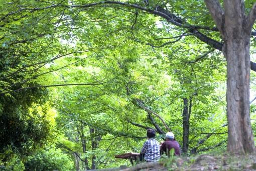 自然 風景 植物 樹木 新緑 若葉 春 初夏 新芽 人物 ベンチ シニア 二人 男性 女性 夫婦 カップル 年配者 のんびり 緑に囲まれて 休日 日曜日 旅行 休息 休暇 のんびりと 仲がいい 会話 二人の時間 オフタイム 癒される 光を浴びて 光透過光 光溢れる ポストカード コピースペース 背景 テクスチャー バックスペース 野外アウトドア 森 林 テーブル