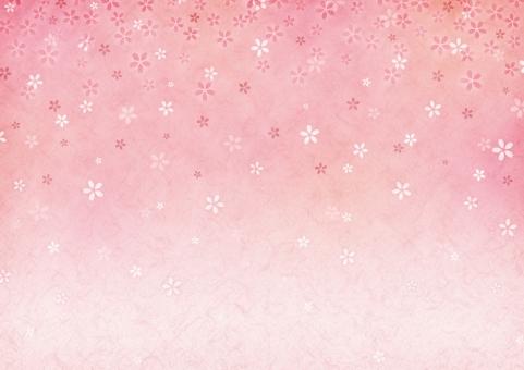背景 背景素材 テクスチャ 桜 さくら サクラ 桃 ピンク 花 和 和紙 和柄 正月 お正月 新年 年賀状 壁紙 年賀 グラデーション 模様 春 花柄 卒業 卒業式 入学 入学式