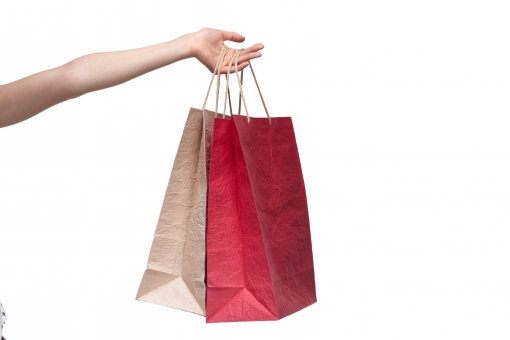 紙袋 手提げ袋 バッグ ペーパーバッグ 紙製 和紙 赤 白 紅白 手 左手 手指 手首 腕 左腕 ハンド 持つ つかむ 提げる 伸ばす 持ち上げる 渡す 差し出す 受け渡す 買い物 ショッピング ハンドポーズ ポーズ ハンドパーツ パーツ 白バック 白背景