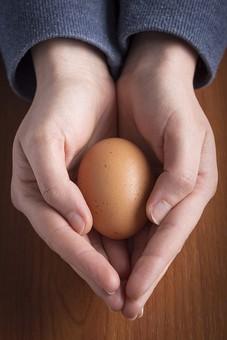 たまご タマゴ 卵 玉子 エッグ 楕円 卵色 ベージュ 料理 並べる 生き物 食べ物 食材 食料  屋内 上から視線 1個 影 生物 鶏 にわとり ニワトリ 両手 持つ 人物 人 見せる 一人 テーブル 机 大切 守る 包む 包み込む 保護