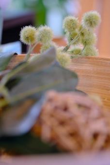 テーブル飾り ディスプレイ 秋 和風 机 ダイニング 緑 植物 縦位置 余白