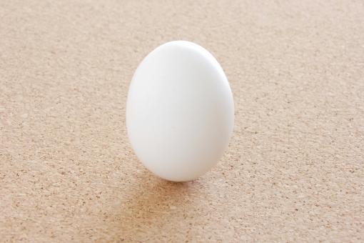 たまご タマゴ 卵 tamago egg エッグ 白い 丸い まるい 新鮮 生みたて 料理 調理 食材 材料 レシピ 栄養 食べる 殻 殻を割る 守る 硬い 堅い きれい おいしい えこ eco クリーン 清潔 誠実 女性的 タイトル 素材 背景 背景素材 イメージ ウェブ web 食品 自然 鶏 にわとり 生む 生まれる 誕生 バースデー ひな