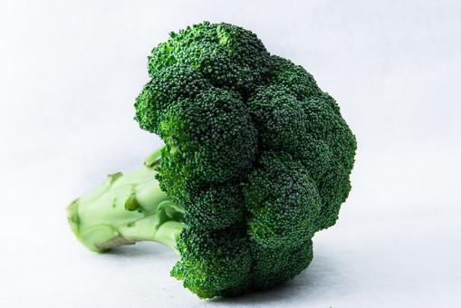 野菜 ブロッコリー 新鮮 フレッシュ 栄養 ヘルシー 健康 美容 ビタミン 食材 食べ物 農産物 作物 収穫 生野菜 緑黄色野菜 緑 スプラウト 花 蕾 外来種 茎 サラダ 八百屋 白バック 白背景