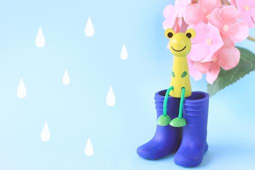 雨の日のカエルさんの写真