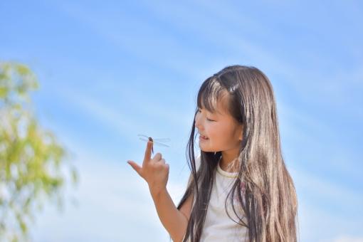 とんぼを観察する子供の写真