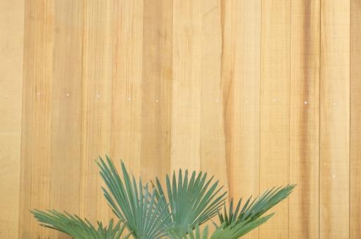 壁 板 木 ナチュラル 葉 葉っぱ wood 茶色 ベージュ カフェ 外装 かべ カベ 木目 diy 日曜大工 素材 ウッド 文字スペース 自然 コピースペース テキストスペース 背景素材 植物 デザイン素材 背景 グリーン 緑 テクスチャ