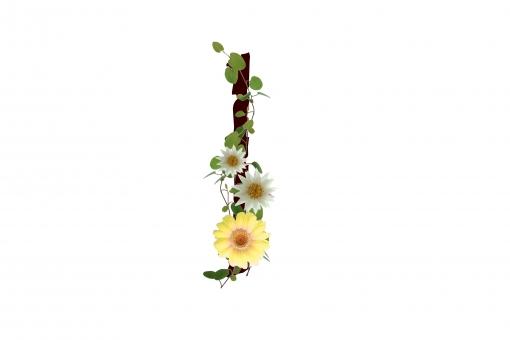 アルファベット ローマ字 英文字 文字 植物 花 グリーン ガーベラ 白い花 素材 テクスチャ