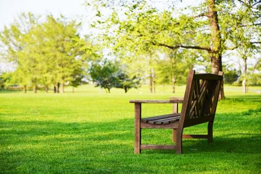 公園のベンチ2の写真
