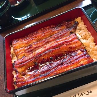 うなぎ 鰻重 蒲焼 土用の丑の日 老舗 鰻 和食 高級