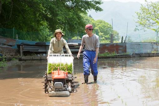 田植え 農家 日本人 農業 農作業 男 男性 女 女性 夫婦 田植え機 田植機 機械 手押し 歩行型 歩行型田植機 田舎 いなか 田んぼ たんぼ 田園 田圃 景色 風景 のんびり 自然 稲 苗 働く 作業 仕事 全身 笑う 笑顔 スマイル