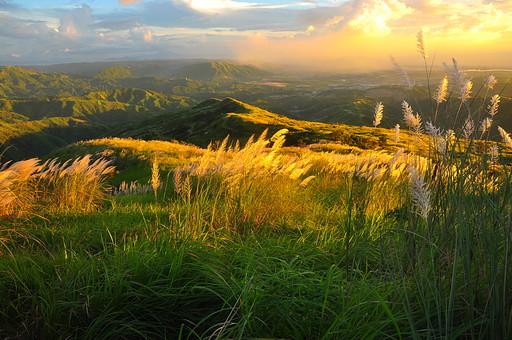 自然 植物 草 野生 草原 原っぱ ススキ 空 雲 夕方 夕日 オレンジ色 橙色 太陽 沈む 光 太陽光 陽射し 葉 葉っぱ 緑 沢山 多い 並ぶ そよぐ 風景 景色 山 山脈 山並み フィリピン 外国 熱帯 南国 東南アジア 島国