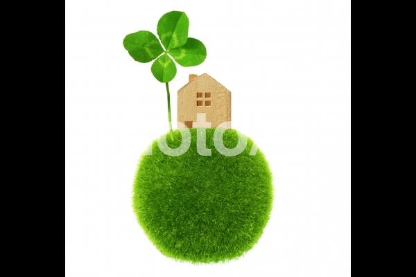 四つ葉のクローバーと家の積木-白背景の写真