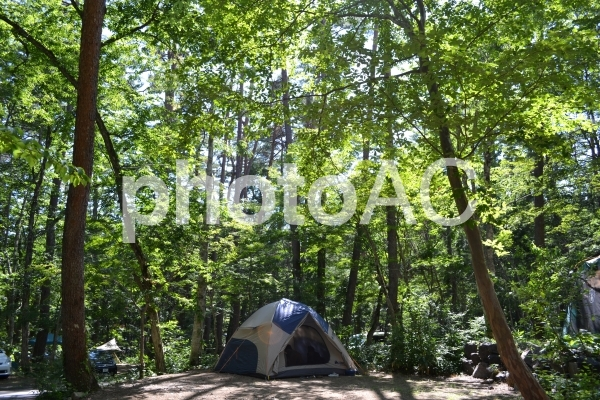 キャンプ イン 大自然の写真
