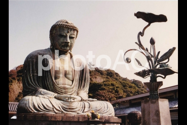 鎌倉大仏の写真
