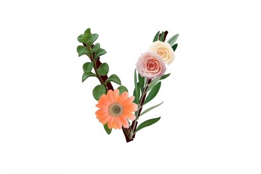 アルファベット ローマ字 英文字 文字 植物 花 グリーン ガーベラ バラ 薔薇 オリーブの葉 テクスチャ 素材