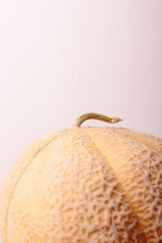 メロン 果物 フルーツ 瓜 ウリ科 果実 水菓子 野菜 果実的野菜 くだもの ベジタブル やさい 黄色 ウリ 緑 イエロー グリーン 高級 デザート キュウリ属 温室 ハウス 露地 網目 ネット系 夕張 北海道  甘い 美味しい おいしい 南国 アップ 接写 白バック 白背景