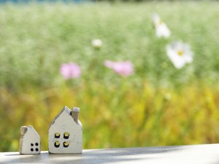 家の小物2個とコスモスの写真