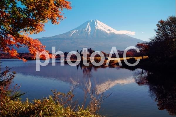 逆さ富士も秋の写真