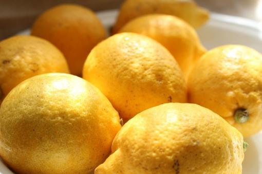 窓際のレモンの写真