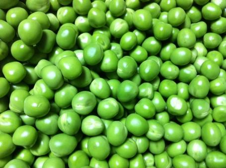グリンピース 豆 植物 種子 緑 季節 野菜 えんどう豆 まめ ベジタブル アイフォン iphone 無添加豆腐 壁紙 食材 食べ物 5月 畑 採れたて 農業 農家 初夏 夏 サマー summer
