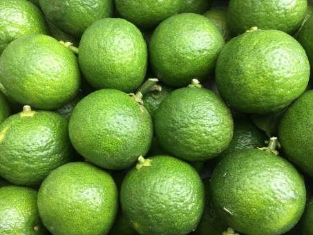 鹿児島 ファーマーズ マーケット 農家 農業 作物 収穫 秋 かぼす カボス 柑橘類 すだち お酒 しぼる すっぱい さわやか 果物 料理 緑 香り 柑橘系 ビタミン ビタミンc