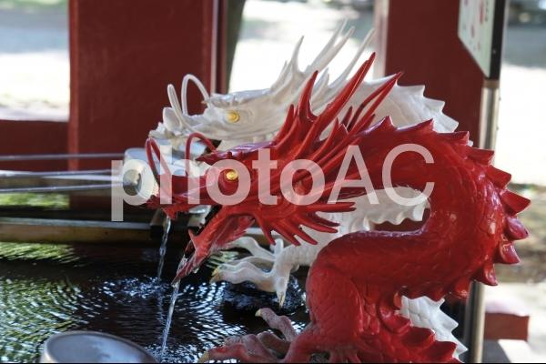 赤白二龍の写真
