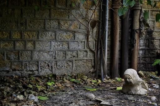 パキスタン イスラム共和国 南アジア イギリス連邦 都市 外国 外国風景 海外 海外風景 景色 風景 町並み 街並 廃墟 石像 暗い 怖い 壁 建物 植物 枯れ葉 落ち葉 葉 葉っぱ 管