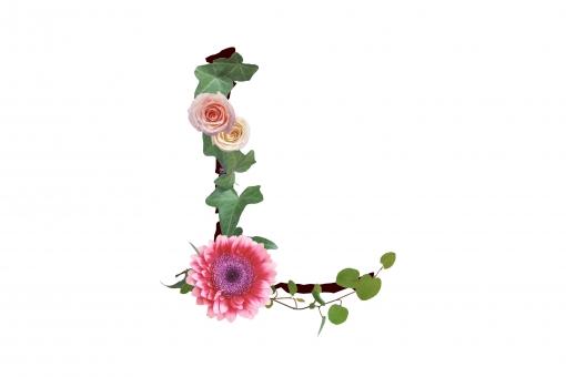 アルファベット ローマ字 英文字 文字 植物 花 グリーン ガーベラ バラ 薔薇 アイビー テクスチャ 素材