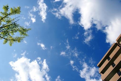 ビル マンション 不動産 空 建物 建築 賃貸 アパート 住宅 ビジネス 間取り 新築 独身 家族 一人暮らし 空 木 風景 引っ越し 分譲 分譲マンション 物件 購入 査定 探す 売却 価格 立地 土地 戸建