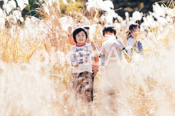 秋の公園で遊ぶ子供たちの写真