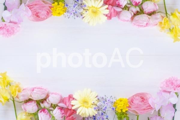 春の花たちのフレームの写真
