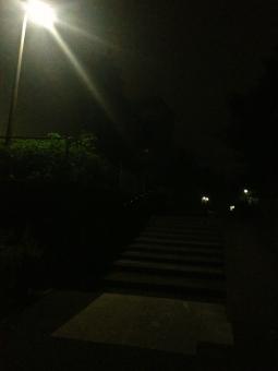 夜道 夜 深夜 真夜中 夜中 暗闇 街灯 明かり 灯り 灯 ともしび 草木 自然 街並み 町並み 町中 街中 階段 石段 植え込み 風景 景色