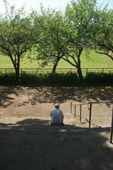 木蔭 木陰 木洩れ日 木漏れ日 初夏 季節感 seasonimage 新緑 自然 緑 草木 樹木 植物 公園 憩いの場所 閑静 風景 景色 散歩 道 道路