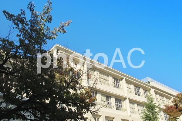 学校の校舎の写真