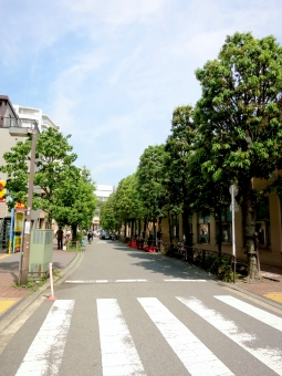 16 tokyo 東京 三軒茶屋 世田谷区 世田谷線 線路 ホーム 遮断機 駅前 街路樹 横断歩道